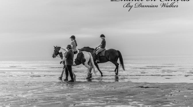 Beach and Horses 15.07.2015